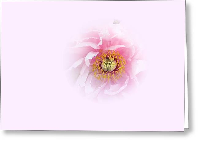 Pink Breath Greeting Card