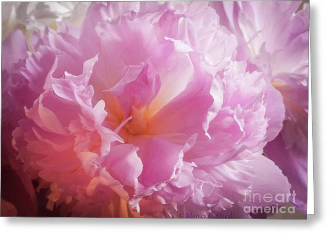 Pink Flowers No. 77 Greeting Card