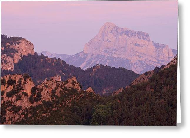 Greeting Card featuring the photograph Pink Skies And Alpen Glow In The Anisclo Canyon by Stephen Taylor