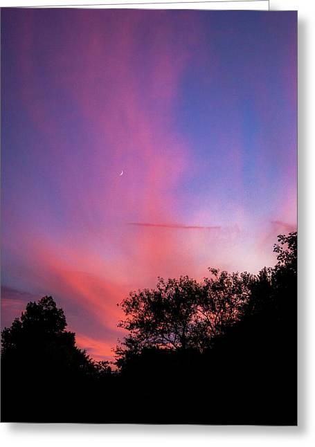 Pink Whisps Greeting Card