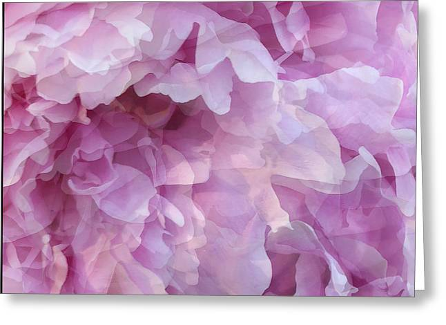 Greeting Card featuring the digital art Pinkity by Cindy Greenstein