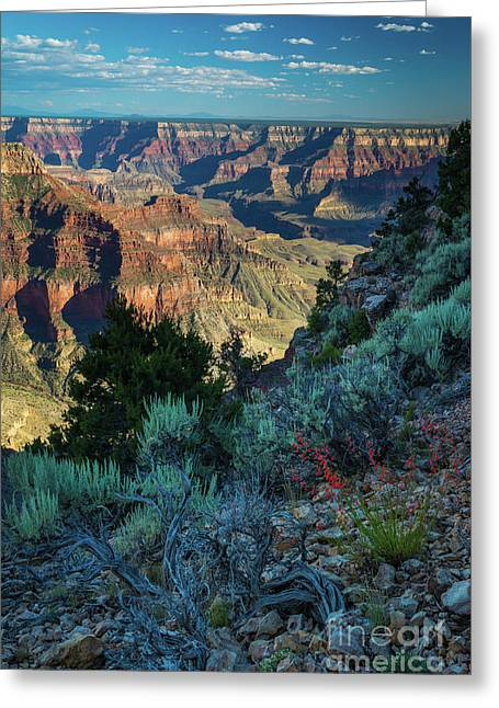 Point Sublime Scenery Greeting Card