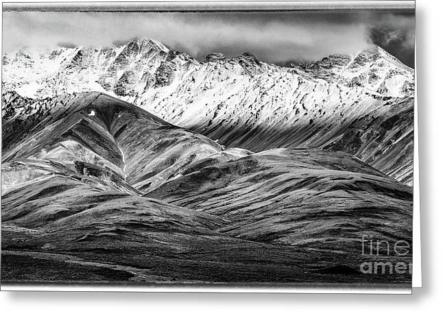 Polychrome Mountain, Denali National Park, Alaska, Bw Greeting Card