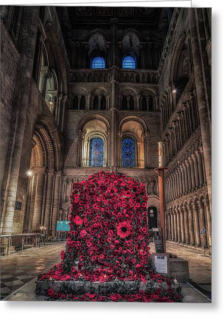 Poppy Display At Ely Cathedral Greeting Card