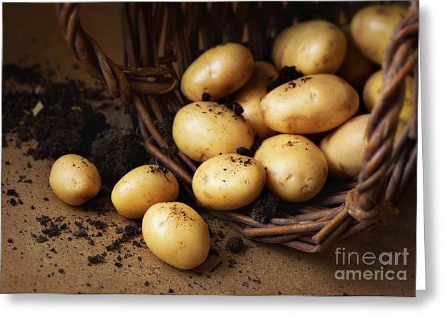 Potatoes In A Wicker Basket With Soil Greeting Card