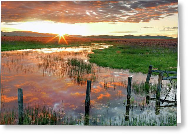 Greeting Card featuring the photograph Prairie Sunrise by Leland D Howard