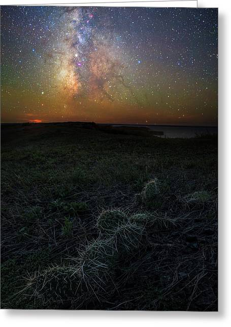 Greeting Card featuring the photograph Pricked  by Aaron J Groen