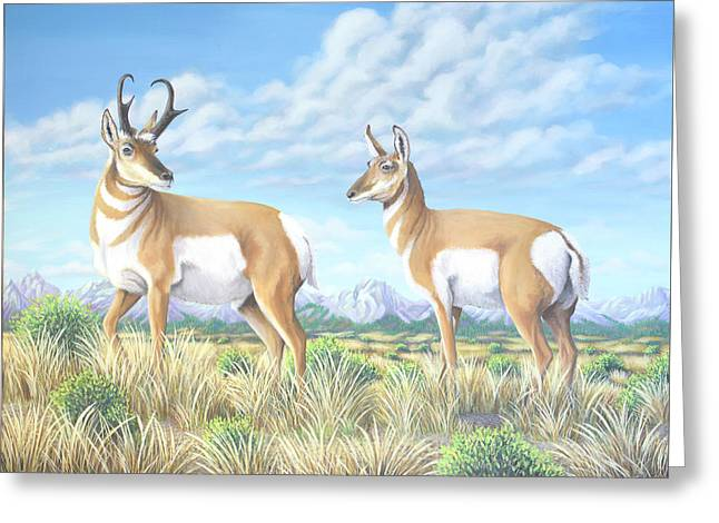 Pronghorn By The Tetons Greeting Card