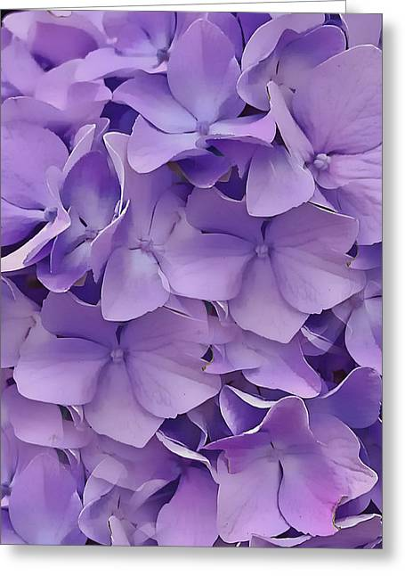 Greeting Card featuring the digital art Purple Hydrangea  by Cindy Greenstein
