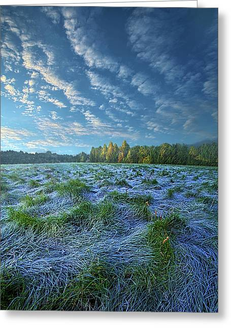 Greeting Card featuring the photograph Quiet Grace by Phil Koch