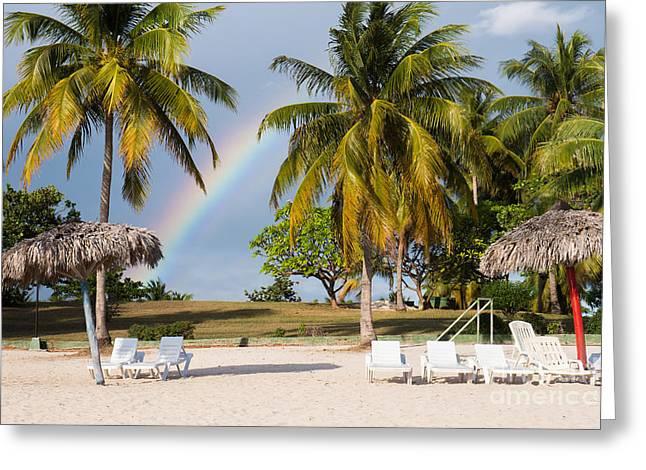 Rainbow Between Palm Trees On Playa Greeting Card