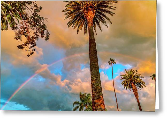Rainbow Over The Palms Greeting Card