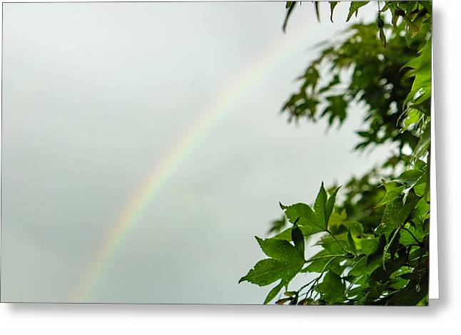 Rainbow With Leaves In Foreground Greeting Card