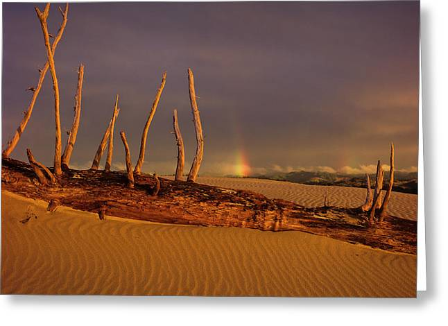 Rainy Day Dunes Greeting Card