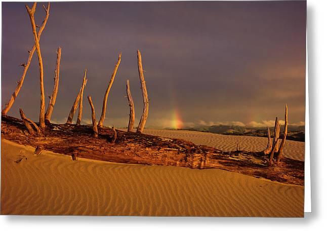Rainy Day Dunes Greeting Card