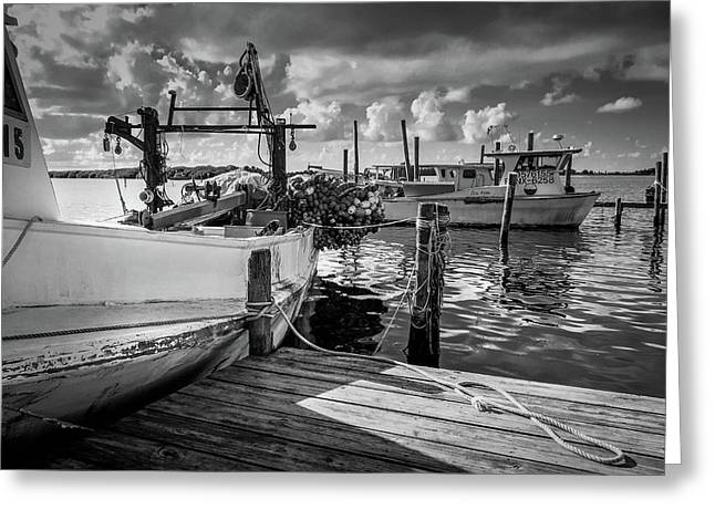 Ready To Go In Bw Greeting Card