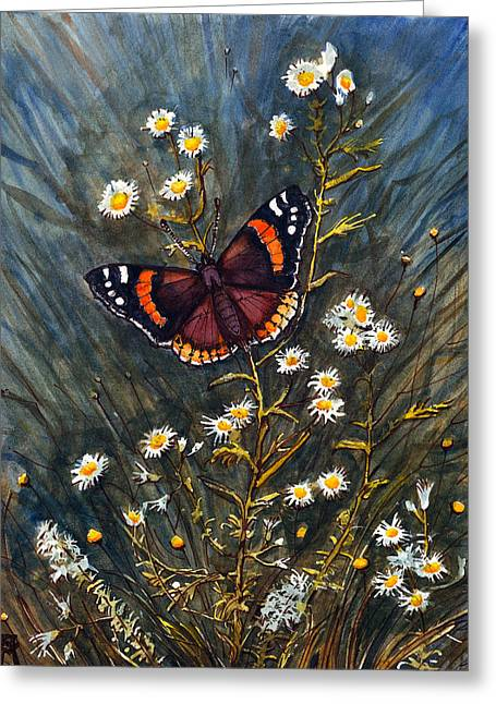Red Admiral And Wild Aster Greeting Card