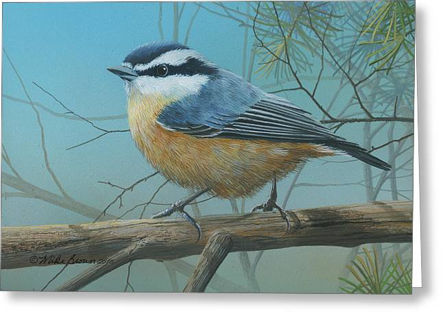 Red Brested Nuthatch Greeting Card