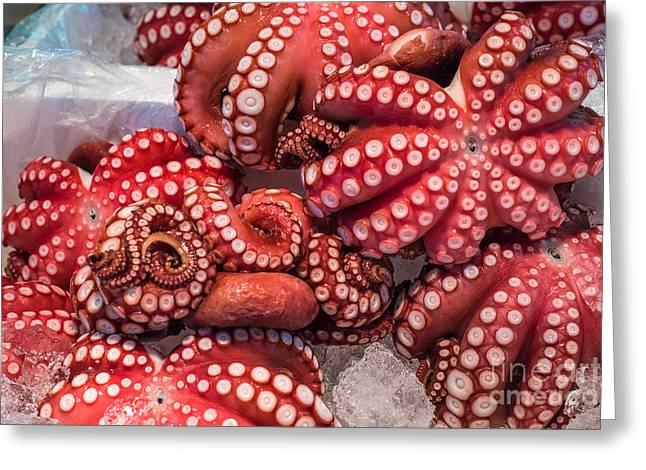 Red Live Octopus At Tsukiji Fish Greeting Card