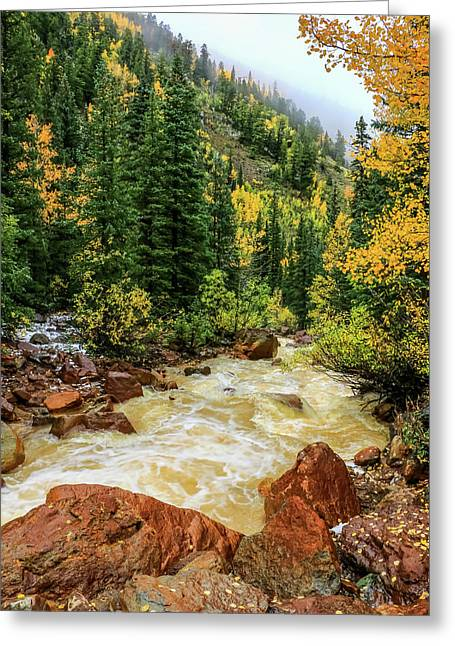 Red Mountain Creek In San Juan Mountains Greeting Card