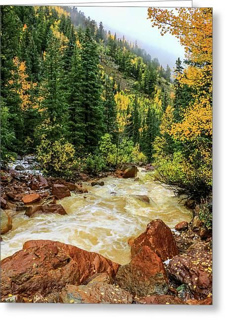 Red Mountain Creek In San Juan Mountains Greeting Card