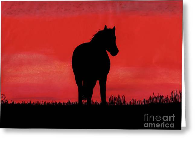 Red Sunset Horse Greeting Card