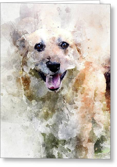 Remember The Four-legged Smile Greeting Card
