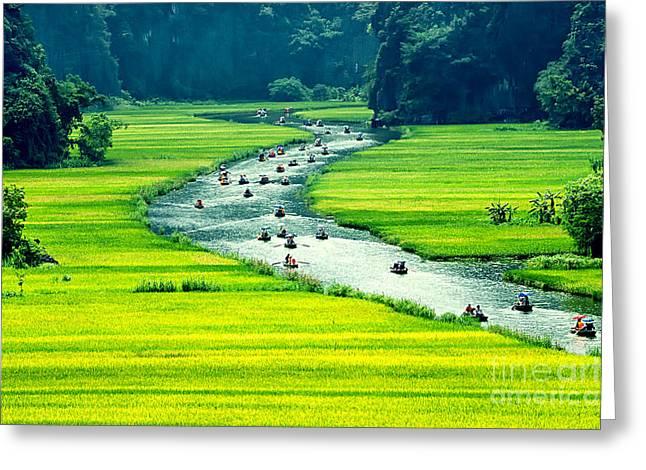 Rice Field And River, Ninhbinh, Vietnam Greeting Card