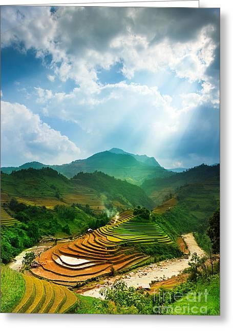 Rice Fields On Terraced Of Mu Cang Greeting Card
