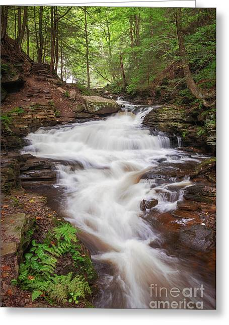 Greeting Card featuring the photograph Rickett's Glen Waterfall II by Sharon Seaward