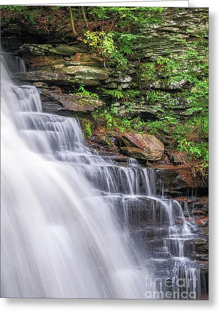 Greeting Card featuring the photograph Rickett's Glen Waterfall by Sharon Seaward
