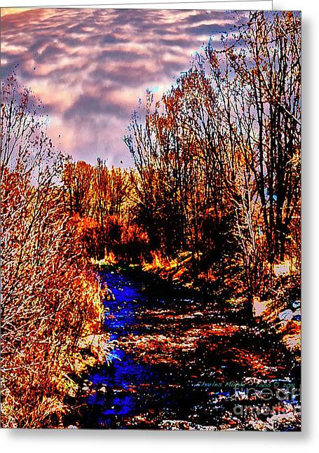 Rio Taos Bosque V Greeting Card