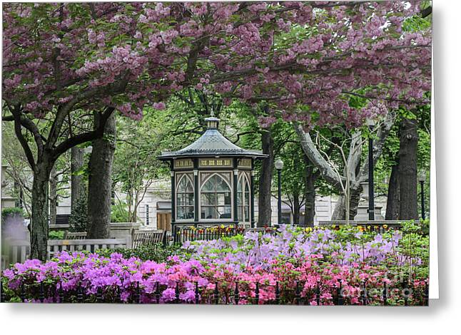 Rittenhouse In Spring Greeting Card by Stacey Granger