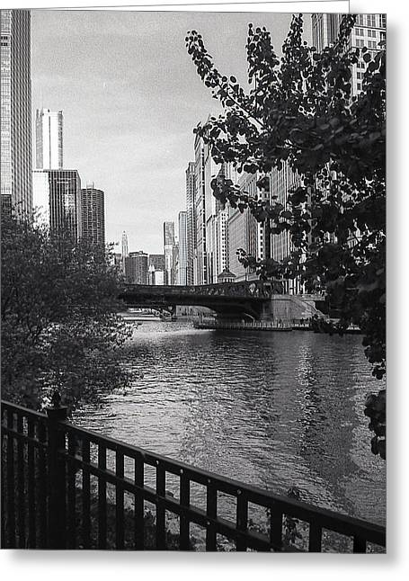 River Fence Greeting Card