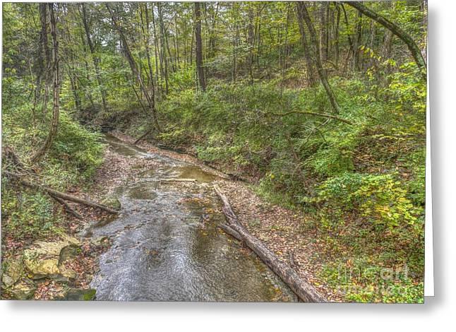 River Flowing Through Pine Quarry Park Greeting Card
