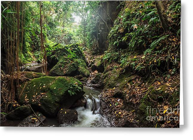 River In Stones Of Tropical Jungle Greeting Card