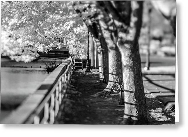 River Lines Greeting Card
