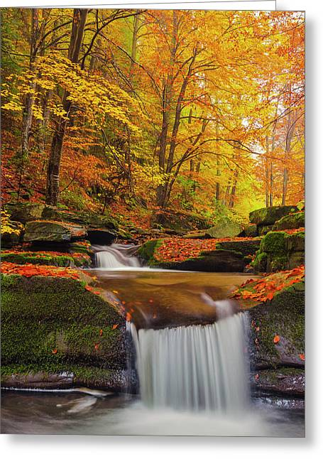 River Rapid Greeting Card