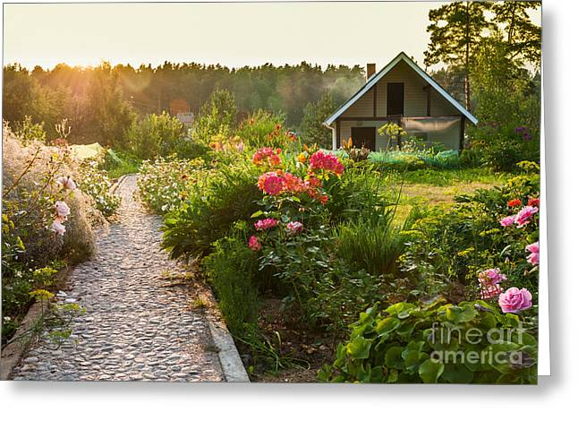 Road In The Beautiful Garden Greeting Card