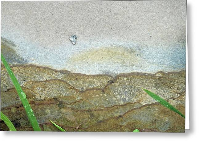 Rock Stain Abstract 5 Greeting Card