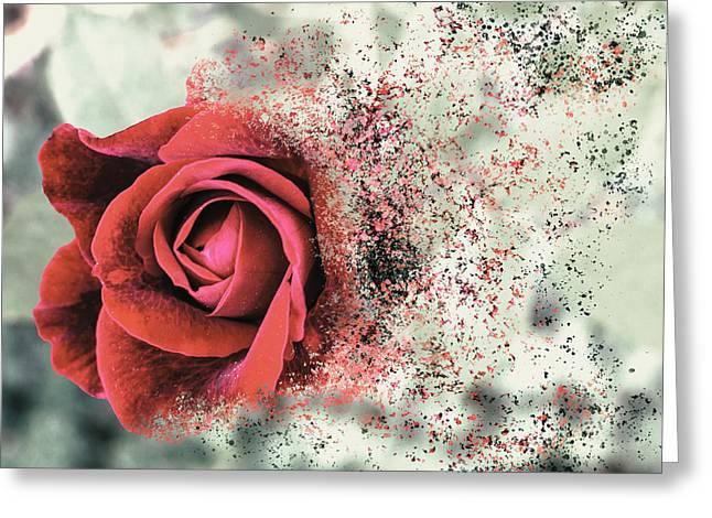 Rose Disbursement Greeting Card