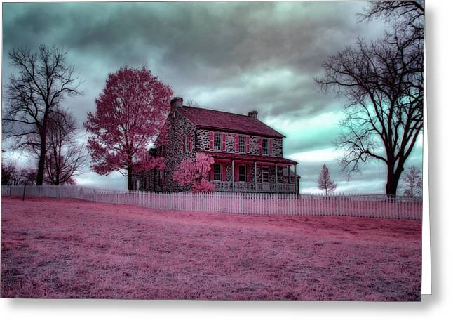 Rose Farm In Infrared Greeting Card