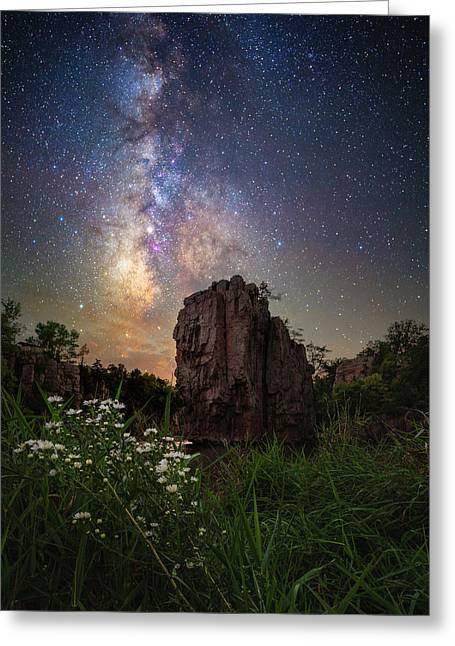 Greeting Card featuring the photograph Royalty  by Aaron J Groen