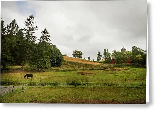 Rural Landscape In Trondheim Norway Greeting Card