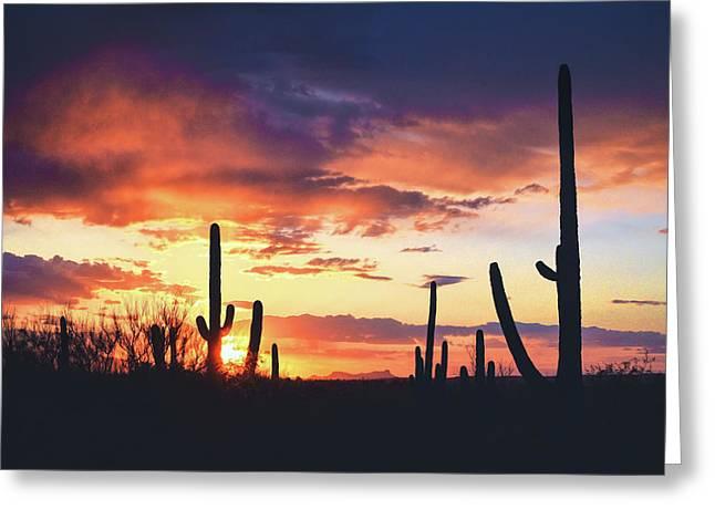 Saguaros Watch The Sunset Greeting Card
