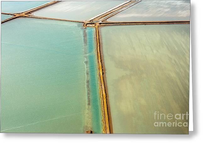 Saline Aerial View In Shark Bay Monkey Greeting Card