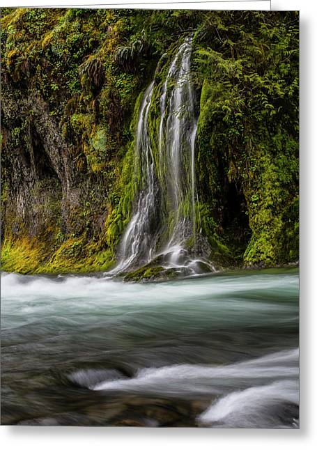 Greeting Card featuring the photograph Salt Creek Falls At Salmon Creek by Matthew Irvin