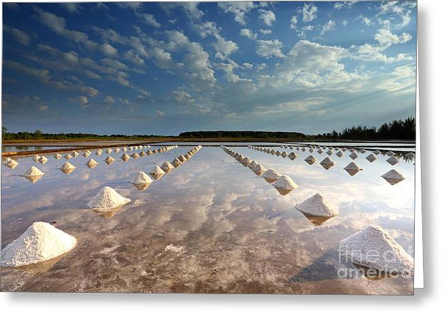 Salt Farm In Eastern, Thailand Greeting Card