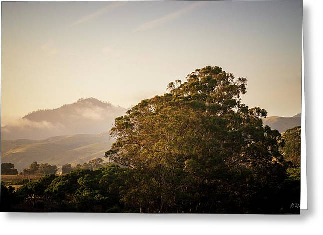 Greeting Card featuring the photograph San Simeon Landscape IIi Color by David Gordon