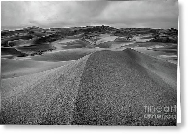 Greeting Card featuring the photograph Sand Dune Ridge by Joe Sparks